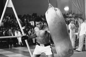 Ali Punching bag