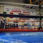 King's Gym