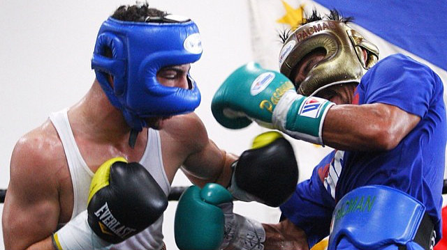 entrainement sparring beginner boxe