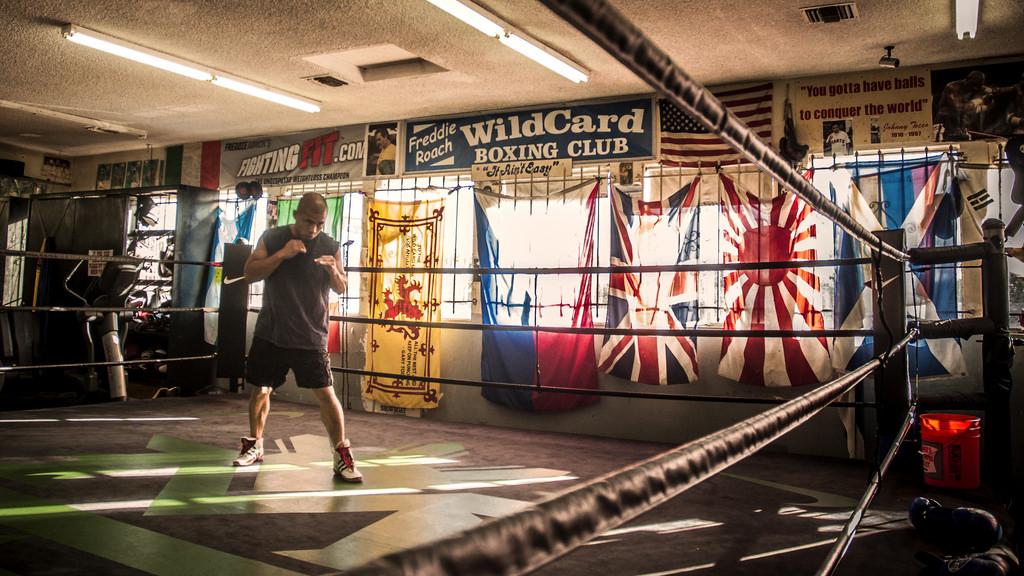 Le Wild Card Gym & Freddie Roach